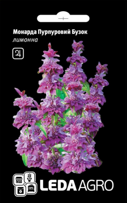Семена монарды Пурпурная Сирень, лимонная, 0.3г, семена Леда Агро фото