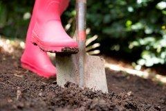 Готовим почву к зиме. Как получить идеальный грунт