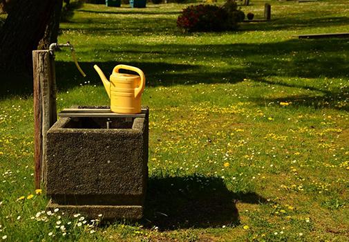 Осенний полив сада. Зачем, как и сколько