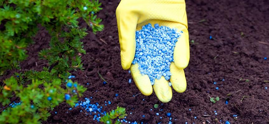 Эффективное использование удобрений (видео)