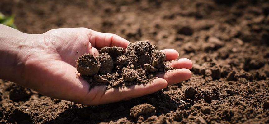 Grow - лучшие препараты для коренного улучшения почвы