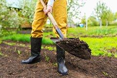 Биопрепараты для почвы на осеннем участке. Готовимся к зиме правильно