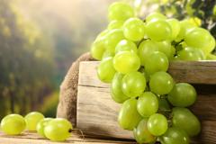 Как сберечь виноград зимой