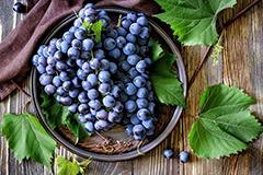 Как вырастить хороший урожай винограда