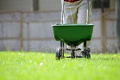Лето для трав. Лучшие летние удобрения для газона