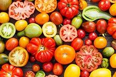 Лучшие сорта томатов 2019 года