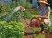 Поливочный шланг Yoyo 20м, Аквапульс фото 3