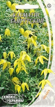 Семена клематиса Тангутский, 0.1г, Семена Украины фото