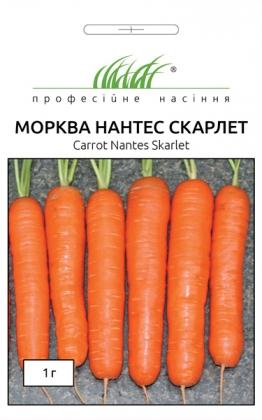 Семена моркови Нантес Скарлет, 1г, United Genetics, Италия, Професійне насіння фото
