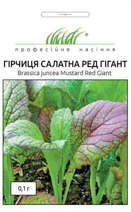 Семена горчицы салатной Рэд Гигант, 0.1г, Hem, Голландия, Професійне насіння фото