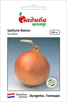 Семена лука Банко F1, 200шт, Syngenta, Голландия, семена Садиба Центр фото