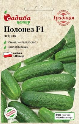 Семена огурца Полонез, 10шт, Польша,  семена Садиба Центр Традиція фото