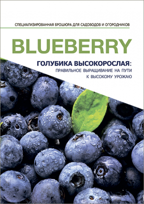 Специализированная брошюра 'Голубика высокорослая' фото