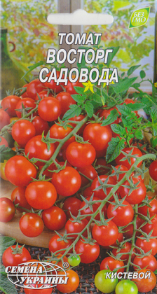 Семена томата Восторг садовода, 0.1г, Семена Украины фото
