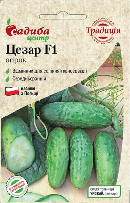 Семена огурца Цезарь, 20шт, Польша, семена Садиба Центр Традиція фото