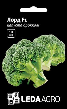 Семена капусты брокколи Лорд F1, 10шт, Seminis, Голландия, семена Леда Агро фото