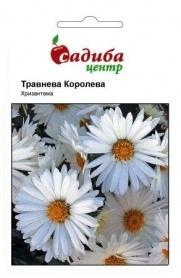 Семена хризантемы Майская королева, 0.1г, Hem, Голландия, Садиба Центр фото