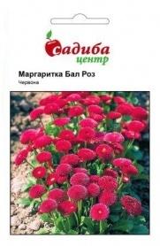 Семена маргаритки Бал Роз, красная, 0,1г, Hem, Голландия, Садиба Центр фото