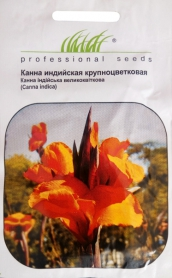 Семена канны индийской, 5шт, Hem, Голландия, Професійне насіння фото
