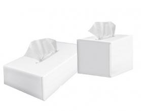Салфетки в боксе, куб, 2-х шар. 80шт, PRO service, 43106800 фото