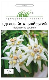 Семена эдельвейса альпийского, 0.1г, Hem, Голландия, Професійне насіння фото