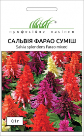 Семена сальвии Фарао смесь, 0.1г, Hem, Голландия, Професійне насіння фото