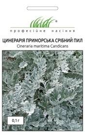 Семена цинерарии Серебряная пыль, 0.1г, Hem, Голландия, Професійне насіння фото