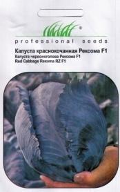 Семена капусты Рексома, 20шт, Rijk Zwaan, Голландия, Професійне насіння фото