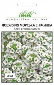 Семена лобулярии Морская снежинка, 20шт, Pan American, США, Професійне насіння фото