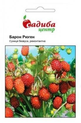 Семена земляники Барон Рюген, 0.2г, Hem, Голландия, Садиба Центр фото