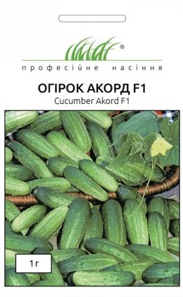 Семена огурца Аккорд F1, 1г, Bejo, Голландия, Професійне насіння фото