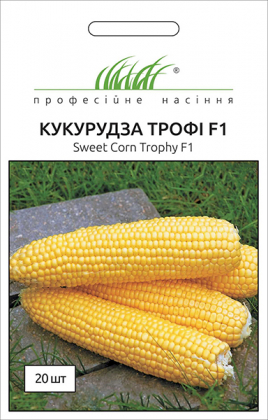 Семена кукурузы Трофи F1, 20шт, Seminis, Голландия, Професійне насіння фото