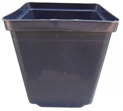 Горшок для рассады квадратный, 11х11х12, 1л, черный, Kloda (Клода) фото