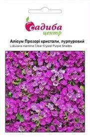 Семена алиссума Прозрачные кристалы, пурпурные, 50шт, Pan American, США, Садиба Центр фото