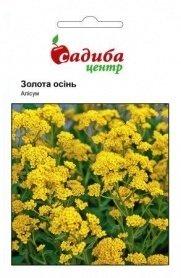 Семена алиссума Золотая осень, 0.2г, Hem, Голландия, Садиба Центр фото