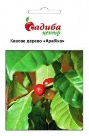 Семена кофейного дерева Арабика, 1г, Hem, Голландия, Садиба Центр фото