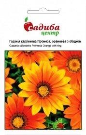 Семена газании Промеза, оранжевая с ободком, 10шт, Hem, Голландия, Садиба Центр фото