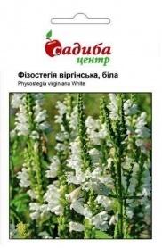Семена физостегии Виргинская белая, 0.1г, Hem, Голландия, Садиба Центр фото