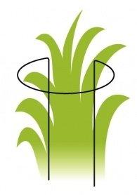 Опора для растения Orangerie, P 4-450-d130 фото