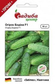Семена огурца Бодина F1, 50шт, Satimex, Германия, семена Садиба Центр фото