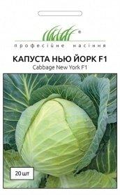 Семена капусты б/к Нью-Йорк F1, 20шт, Wing Seed, Голландия, Професійне насіння фото