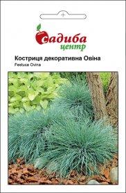 Семена кострици декоративной Овина, 0.1г, Hem, Голландия, Садиба Центр фото
