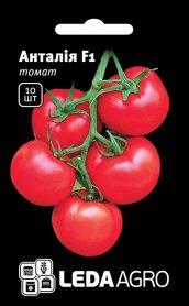 Семена томата Анталия F1, 10шт, Yuksel, Турция, Семена Леда Агро фото