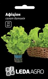 Семена салата батавия Афицион, 30шт, Rijk Zwaan, Голландия, семена Леда Агро фото