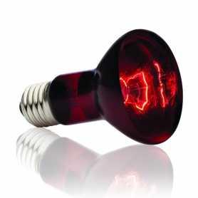 Лампа инфракрасная для террариума R20/50W, Exo-terra фото