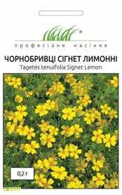 Семена бархатцев мелкоцветных Сигнет, лимонные, 0.2г, Hem, Голландия, Професійне насіння, до 2019 фото