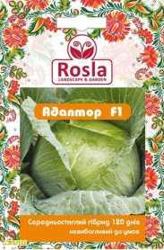 Семена капусты Адаптор F1, 20шт, Syngenta, Голландия, Семена TM ROSLA (Росла), до 2019 фото