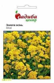 Семена алиссума Золотая осень, 0.2г, Hem, Голландия, Садиба Центр, до 2019 фото