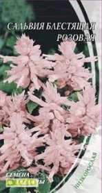 Семена сальвии блестящей розовой, 0.2г, Семена Украины, до 2019 фото