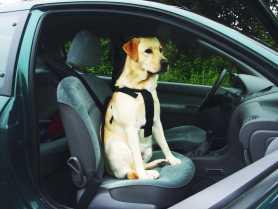 Шлея для собак Pet Pro в автомобиль, средний, 60х75см. фото